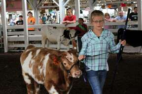 Livestock shows and midway rides were popular at the Tuscola County Fair Wednesday in Caro.