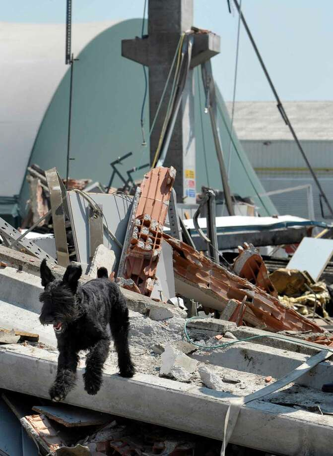 A dog walks amid debris of a collapsed factory in Mirandola, northern Italy, Tuesday, May 29, 2012. A magnitude 5.8 earthquake struck the same area of northern Italy stricken by another fatal tremor on May 20. (AP Photo/Marco Vasini) Photo: ASSOCIATED PRESS / AP2012