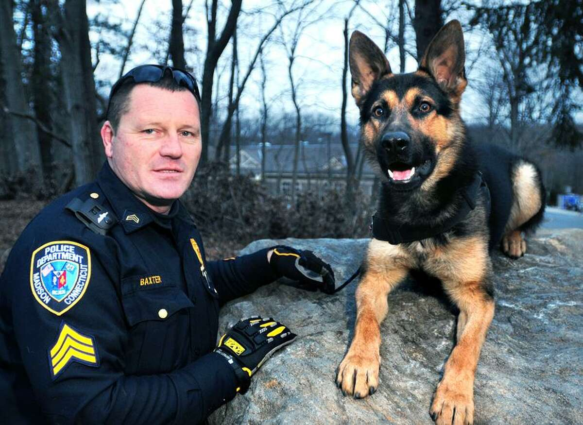 Madison police Sgt. Bryan Baxter is photographed with the newest member of the department, Paco, in Madison. Arnold Gold/Register