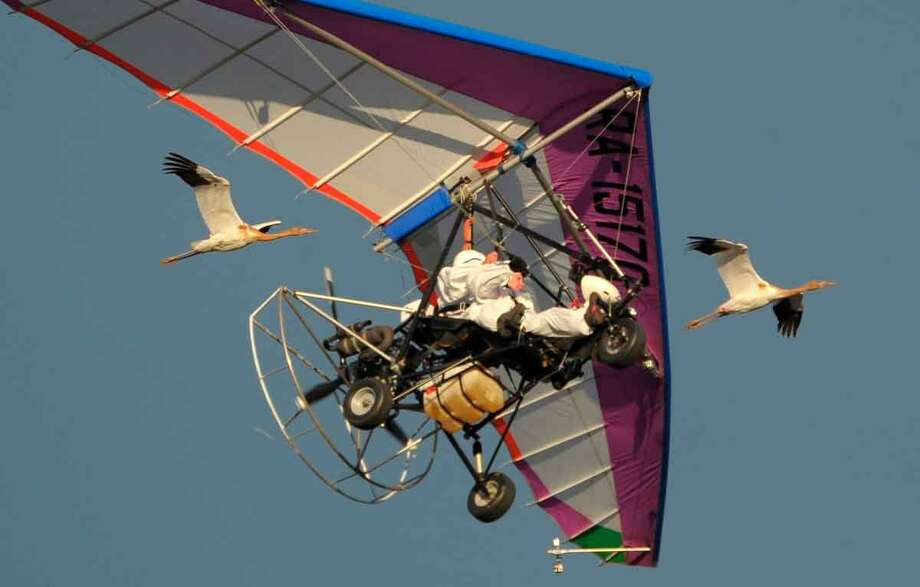 Russian President Vladimir Putin flies in a motorized hang glider alongside two Siberian white cranes, on the Yamal Peninsula, in Russia Wednesday Sept. 5, 2012. Putin took part in a flight as part of a program devised by environmentalists to lead the endangered cranes, which were raised in captivity, on their migration to Asia. (AP Photo/RIA-Novosti, Alexei Druzhinin, Presidential Press Service) Photo: ASSOCIATED PRESS / AP2012