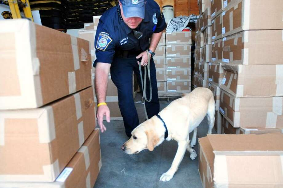 North Haven Police Officer Alan Cantele goes through morning drug detection drills with the new drug detection dog, Koda, a two-year-old yellow labrador retriever, in the department's warehouse. Photo by Arnold Gold/New Haven Register