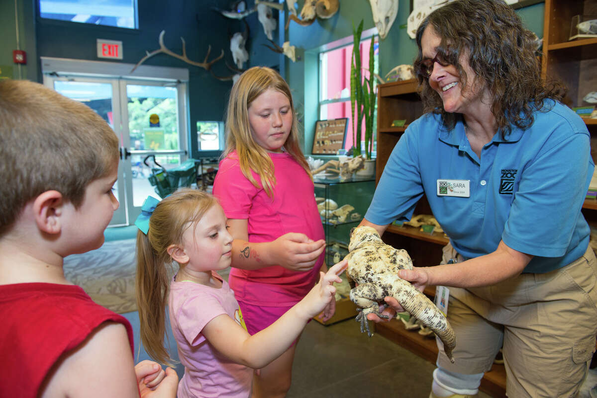 Houston Zoo zookeeper Sara Riger was recently honored by her peers from the American Association of Zoo Keepers for her work on site in Houston. She won the Golden Keeper award by the American Association of Zoo Keepers, besting nine other nominees.