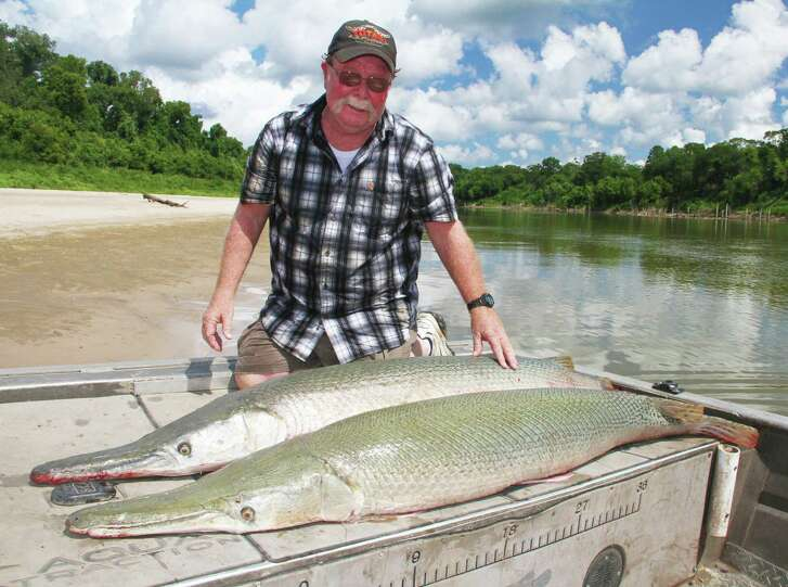 Anglers from around the nation and world travel to Texas' Trinity River to target large alligator gar. The river holds what many consider the premier fishery for these once persecuted, now praised and pursued ancient, toothy armored fish that can weigh as much as 300 pounds.