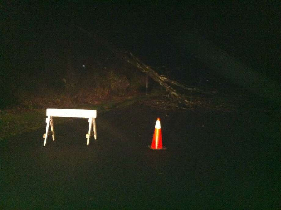 A tree blocks passage of South Road in Harwinton.