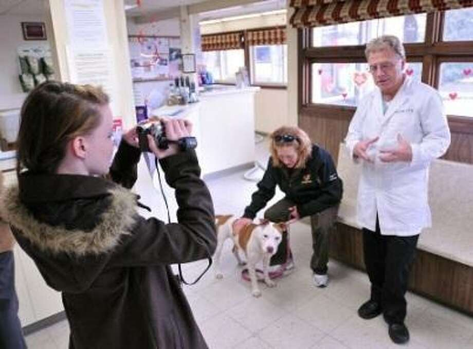 """Sadie Schroeder, a junior from Hill Regional Career High, videotapes an interview with Dr. James Wells and his former patient, """"Princess,"""" the Pit Bull who was stabbed 29 times. With """"Princess"""" is her new owner, Diane Pearce of Hamden. Schroeder was working on a documentary on the doctor, staff and """"Princess"""" for a school project. They are at the North Haven Animal Hospital, where """"Princess"""" was treated. Peter Casolino/Register"""