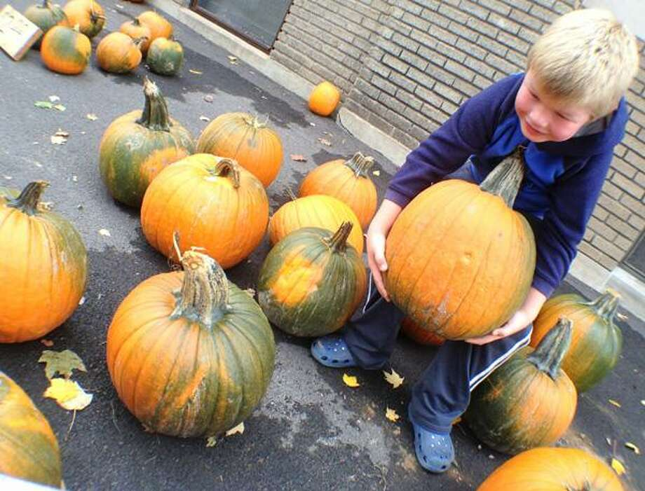 "Dispatch Staff Photo by JOHN HAEGER <a href=""http://twitter.com/oneidaphoto"">twitter.com/oneidaphoto</a>  Nicholas Martin , 6, of Oneida finds just the right pumpkin during St. Patrick 's annual Pumpkin Festival held at the school in Oneida   on Saturday , Oct. 22, 2012."