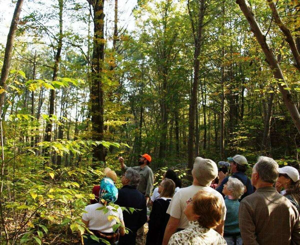 Heart of Westwoods hike in Guilford. Photo courtesy of Sarah Williams.