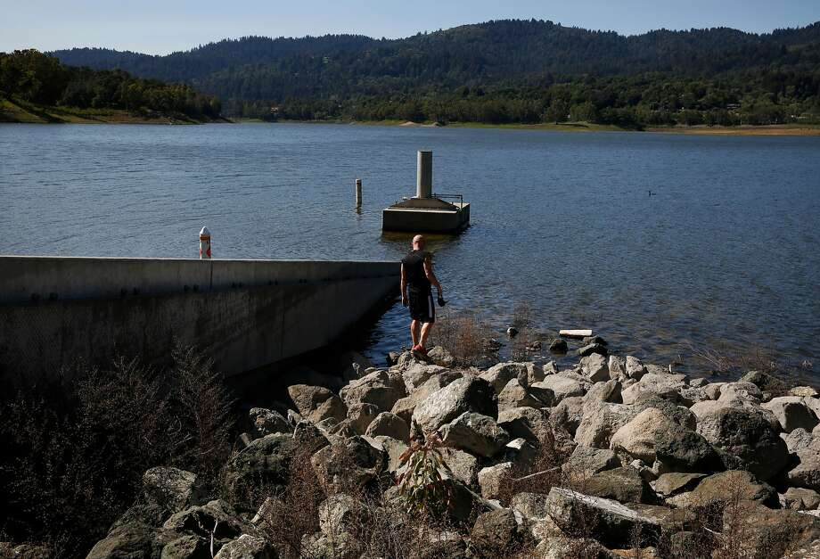 Cody Gordon investigates the water's edge where it has dropped to low levels at the Lexington Reservoir April 2, 2015 in Los Gatos, Calif. The reservoir, which is part of Santa Clara Valley Water District, is sitting many feet lower than it would be in a normal year. Photo: Leah Millis, The Chronicle