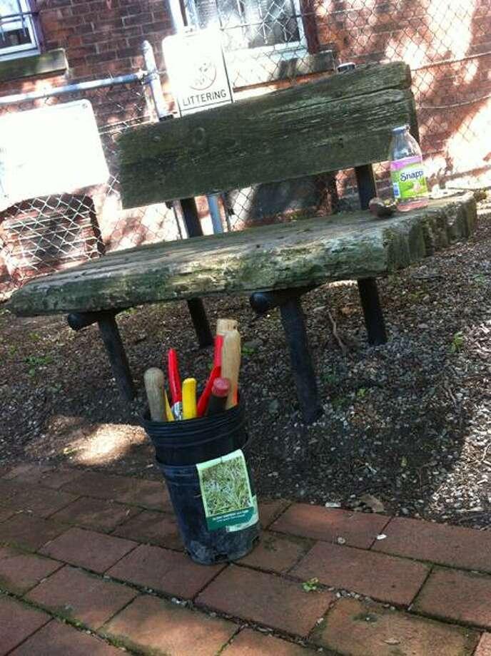 Bench at Rainbow Park on Edgewood Avenue