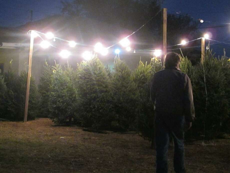 In this Wednesday photo, Fraser fir Christmas trees are offered for sale at a tree lot in Mount Pleasant, S.C. When it comes to growing Christmas trees it's a tale of two Carolinas with North Carolina the second-largest tree producer in the nation while South Carolina has a handful of small growers.  ASSOCIATED PRESS PHOTO/Bruce Smith Photo: AP / AP