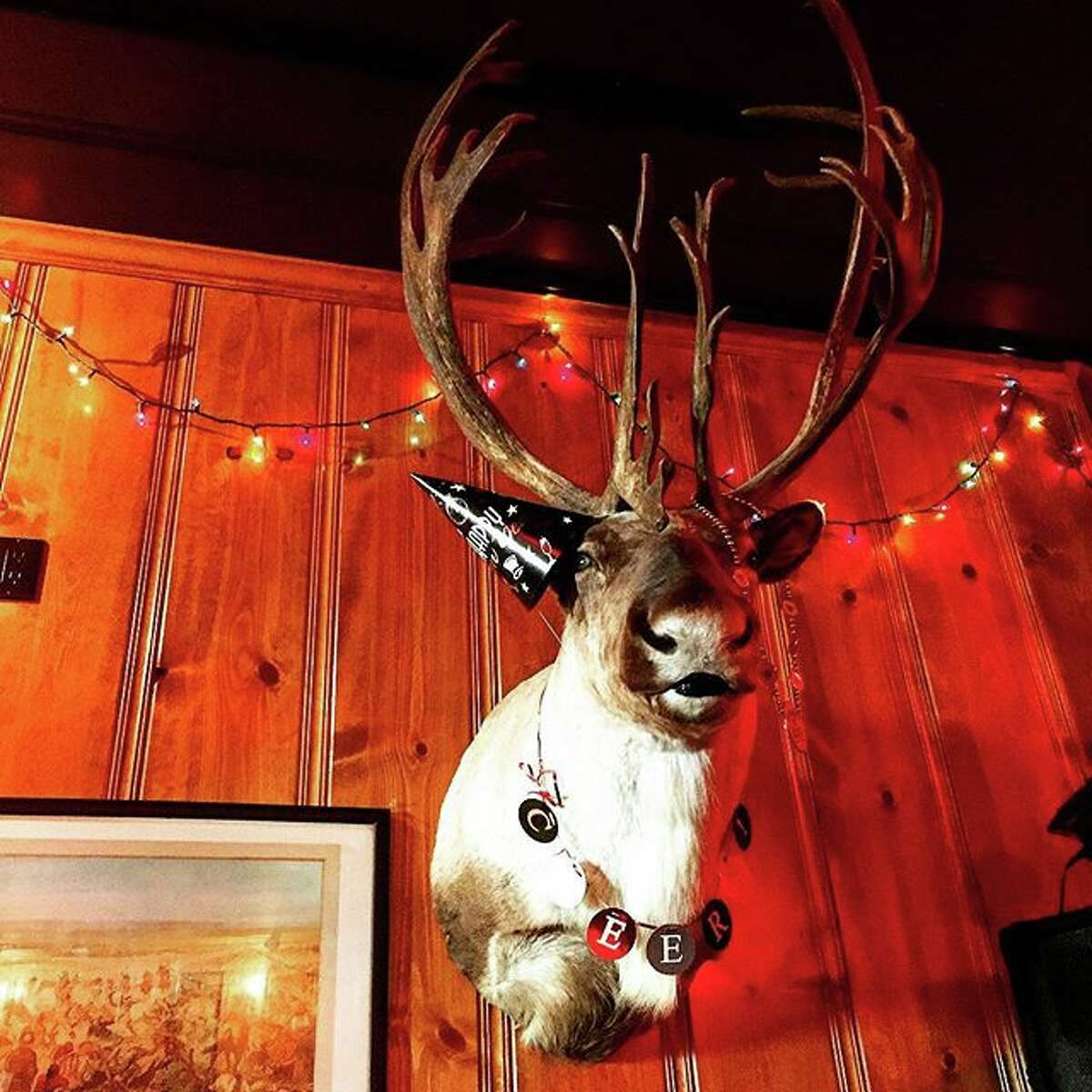 The new caribou on the wall at The Riptide replacing 150-year-old