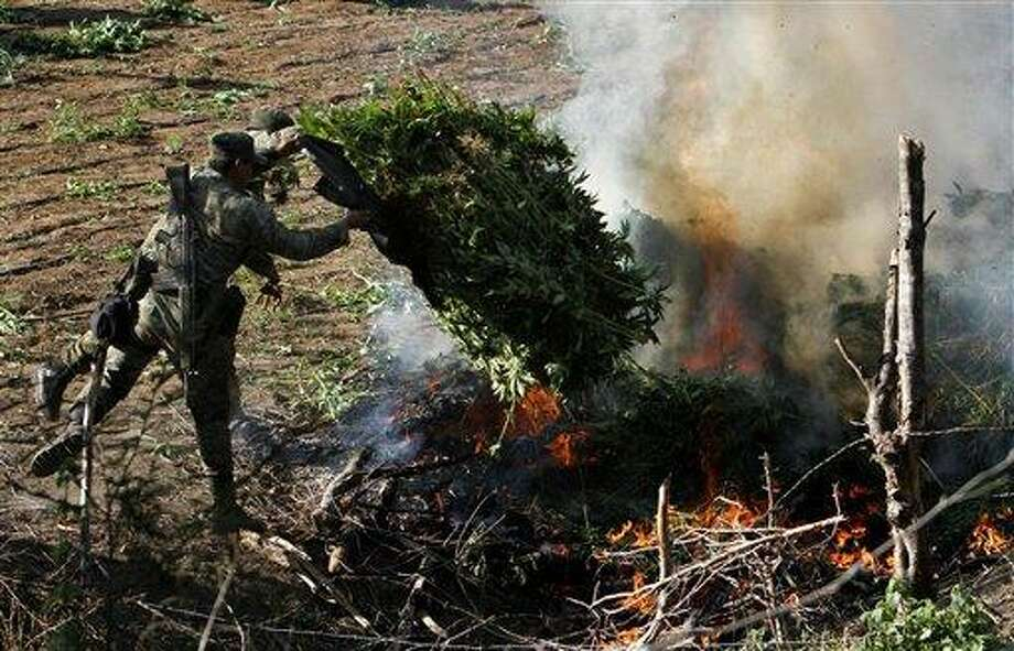 Soldiers incinerate marijuana plants at an illegal plantation found during a military operation on Friday at the Culiacan mountains, northern Mexico, Monday. Associated Press Photo: ASSOCIATED PRESS / AP2012