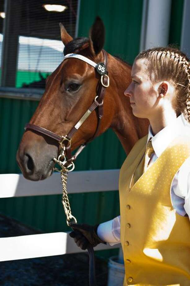 Photo by Joseph Torres, Arcadian photographer Morrisville State College equine student Hillary Hartnett leads Juliet during the college's annual standardbred sale which took in nearly $1.8 million.