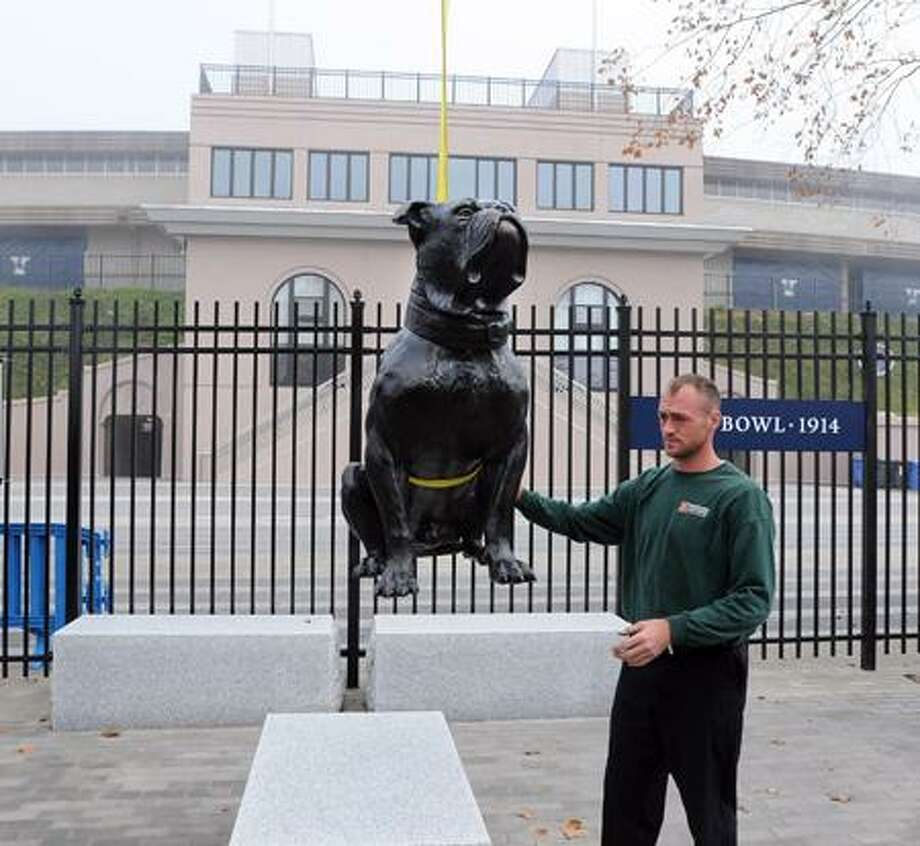 """New Haven-- Ryan Mack, an art mover for Mariano Brothers (Bethel, CT) moves the new """"Handsome Dan"""" statue into place outside the Yale Bowl. The statue was made by scanning the original stuffed """"Handsome Dan I,"""" who died in 1897 and was the original Yale mascot. The statue was produced by Centerbrook Architects (out of Essex).  Peter Casolino/New Haven Register11/09/11"""
