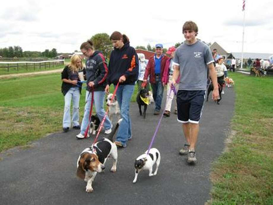 Photo courtesy Wanderers' Rest People walk their dogs around the track during last year's Canine Classic.