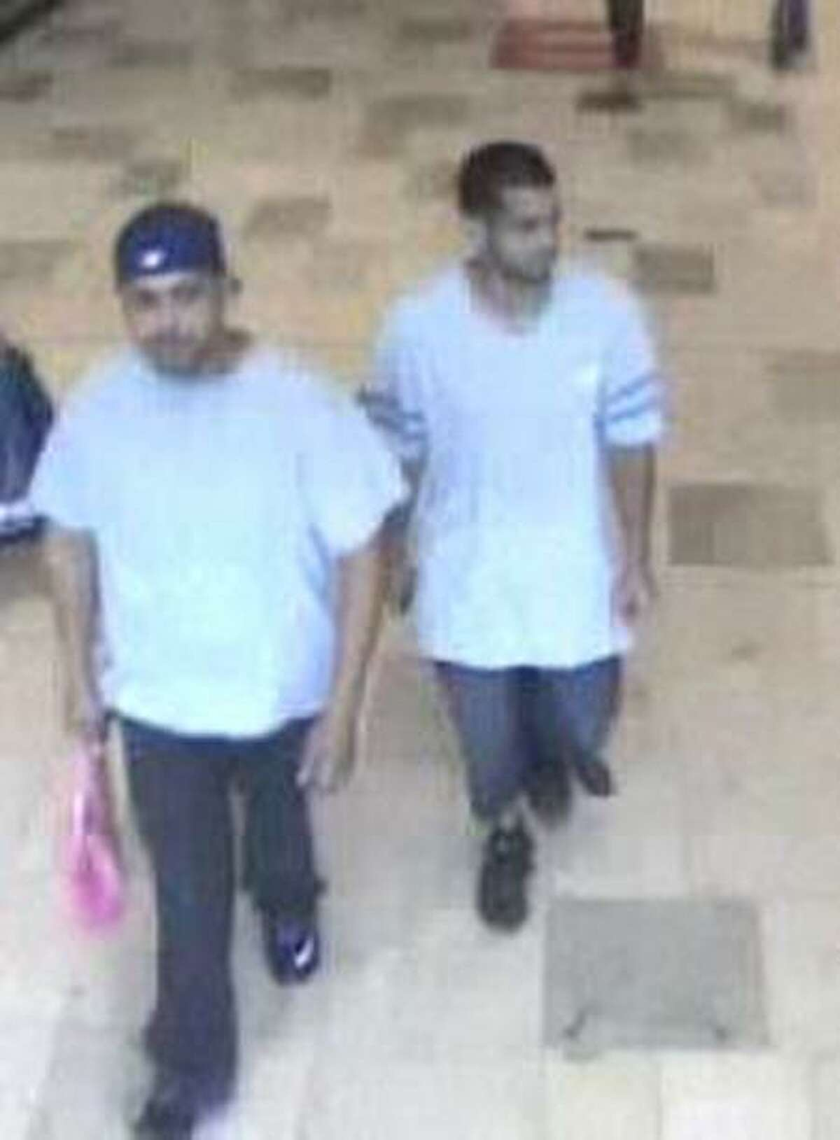Mall survellance photo shows two suspects in armed robbery attempt.
