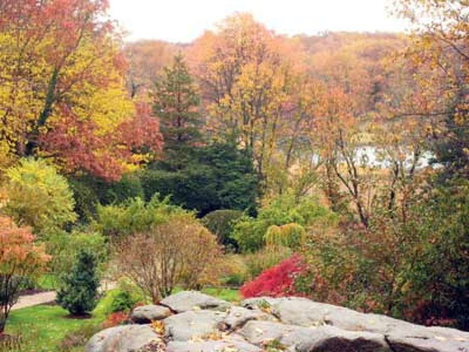"""Michael Rosenthal's  Branford garden can be  found in """"Private Gardens  of Connecticut."""""""