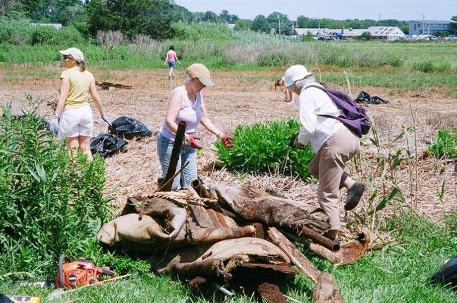 Cleanup volunteers lug around discarded junk out of a Guilford marsh bordering Seaside Avenue last weekend.