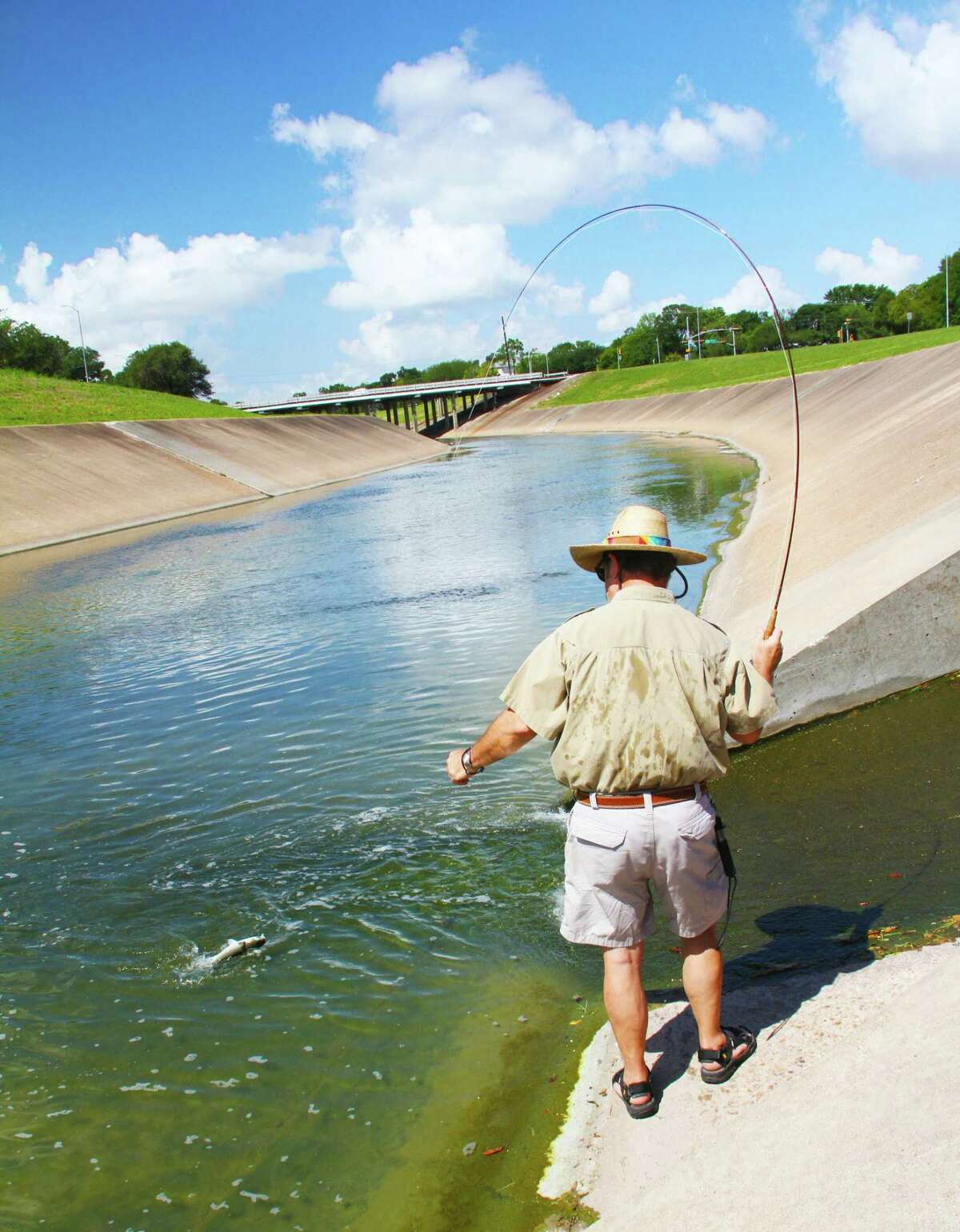 Fly-fisher and fishing guide/instructor Mark Marmon fights an acrobatic striped mullet that slammed a fly worked in the concrete-lined section of Houston's Brays Bayou. Marmon has landed 18 species of fish from the city's urban waterways.