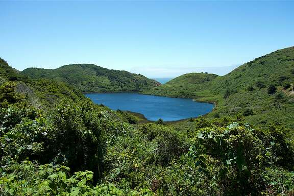 Pelican Lake is a gorgeous lake nestled on the coast near the Coast Trail from the Palomarin Trailhead at Point Reyes National Seashore in Marin County