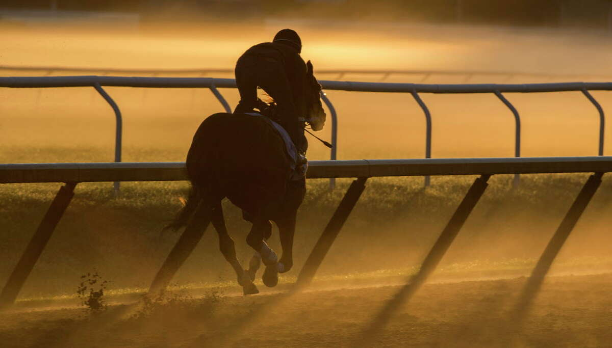 Gun Runner, an expected entrant in the Whitney Stakes takes to the track at the Oklahoma Training Center for his final work in preparation for the Grade 1 Stake Sunday July 30, 2017 at the Saratoga Race Course in Saratoga Springs, N.Y. (Skip Dickstein/Times Union)