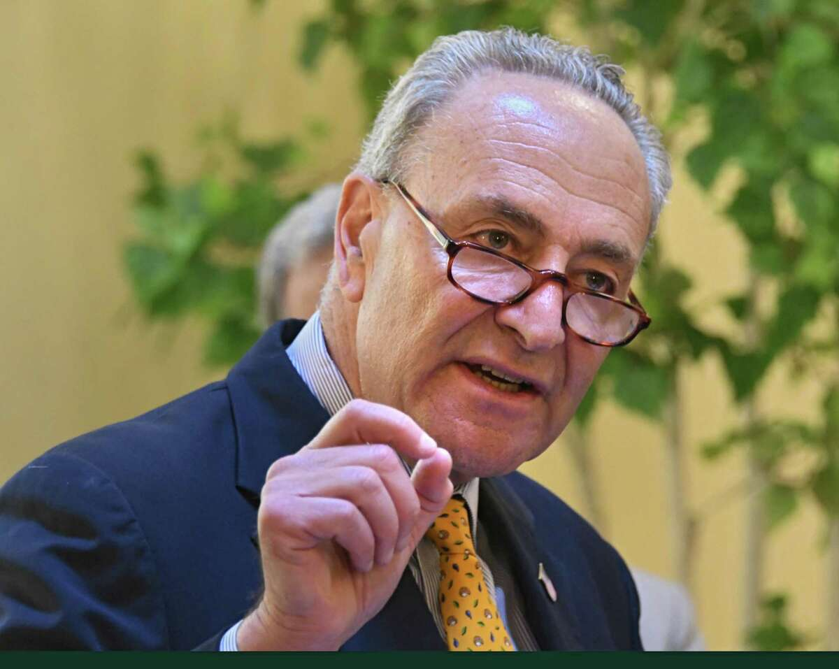 U.S. Senator Charles Schumer explains how to check for ticks after being outdoors as he talks about tick-born illnesses at Albany Medical Center on Monday, July 31, 2017 in Albany, N.Y. (Lori Van Buren / Times Union)