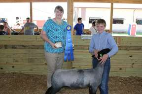 Monday's daytime action at the Huron Community Fair included horse and sheep shows.