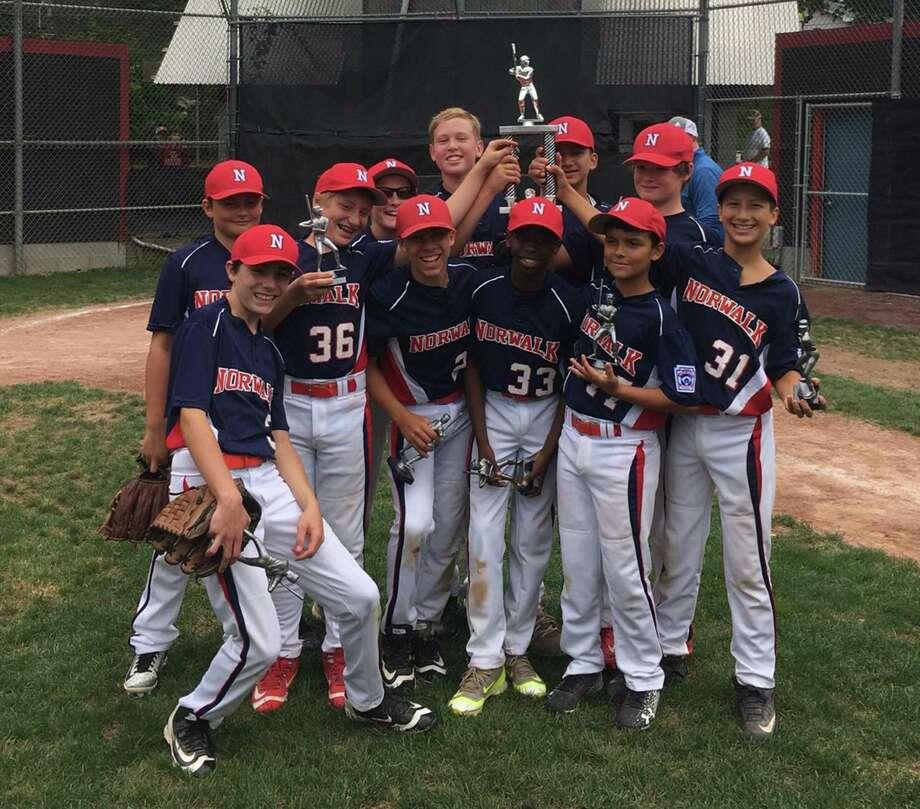 Norwalk Little League celebrates winning the annual Jerry LaMotta Tournament. Photo: Contributed Report