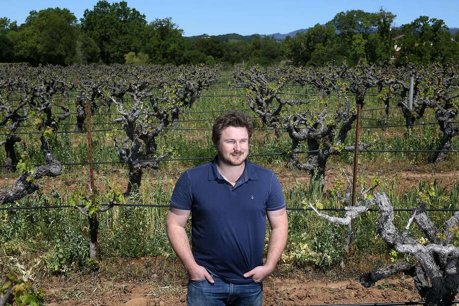 Morgan Twain-Peterson of Bedrock Wine, pictured here in his vineyard of century-old vines near Glen Ellen, is taking over Evangelho. Photo: Jason Henry, Special To The Chronicle