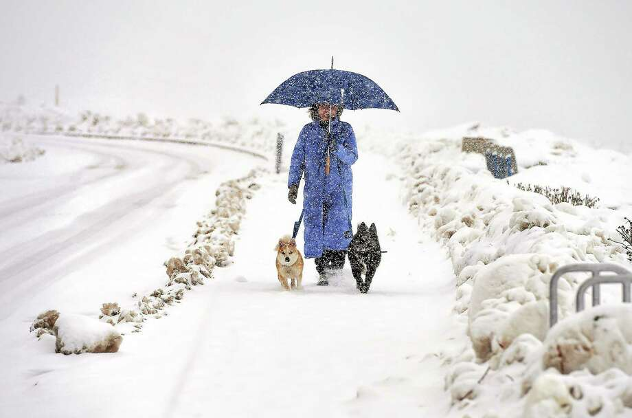 (Arnold Gold-New Haven Register)  Leslie Cleary walks her dogs, Bryn (left) and Scout, as the snow falls along Beach Avenue n Milford Sunday. The latest storm was expected to end overnight. Photo: Journal Register Co.