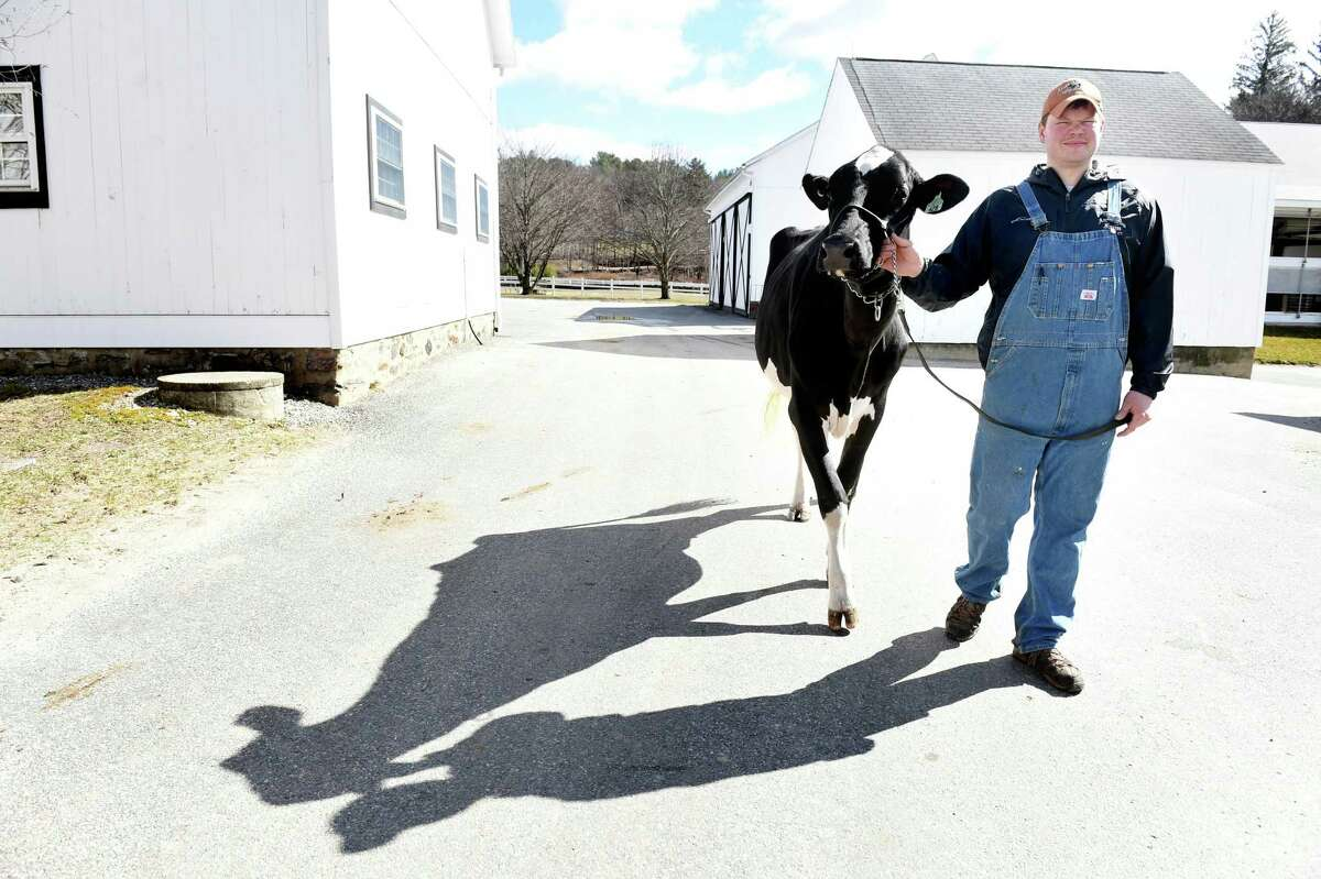 >>Click through to see the dairy farms of the local dairy farms in Connecticut. Click here for the full list.