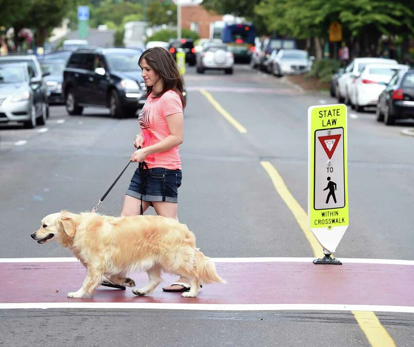 Dog and music lovers and their pets attend Woofstock on the Branford Green on 8/15/2014. agold@newhavenregister.com Photo by Arnold Gold/New Haven Register
