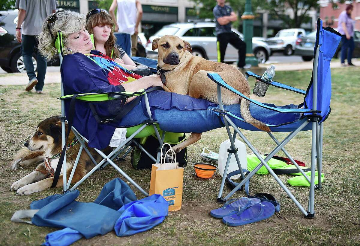 (Catherine Avalone - New Haven Register) Shelby Turner's dog Bo, a Black Mouth Cur curls up on Shelby's mother, Peggy Turner's lap during the concert by Jen Durkin and the Business at the 3rd annual Woofstock on the Branford Green, Saturday, August 8, 2015. Lola, at left, relaxes behind her owner, Peggy, watching festival-goers pass by.