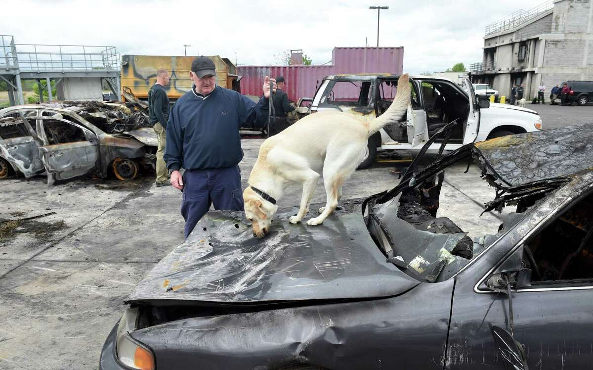 Lt. Tom Murray of the Boston Arson Squad handles Keegan, an accelerant detection canine, as she sniffs the hood of a burned out car for traces of accelerant during quarterly training at the New Haven Regional Fire Academy in New Haven on 5/24/2016. The car was used earlier in the day for fire investigation training. Photo by Arnold Gold/New Haven Register agold@newhavenregister.com