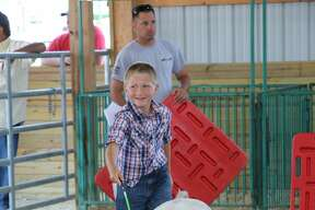Livestock shows Tuesday at the Huron Community Fair included dairy, swine and rabbits.