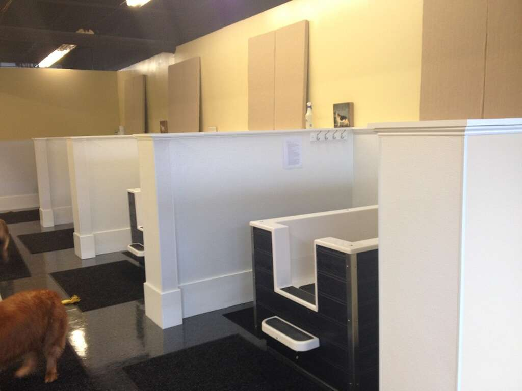 Dog laundromat to open tuesday in milford new haven register windowtaboola windowtaboola taboolapush mode thumbnails c container taboola interstitial gallery thumbnails 20 solutioingenieria Image collections