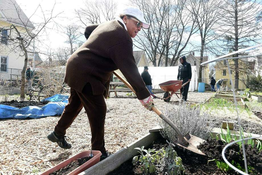 Janis White of New Haven adds fresh soil to one of her three raised beds at ChapelSeed Community Garden on Chapel Street in New Haven on 4/8/2017.  Photo by Arnold Gold/New Haven Register  agold@newhavenregister.com