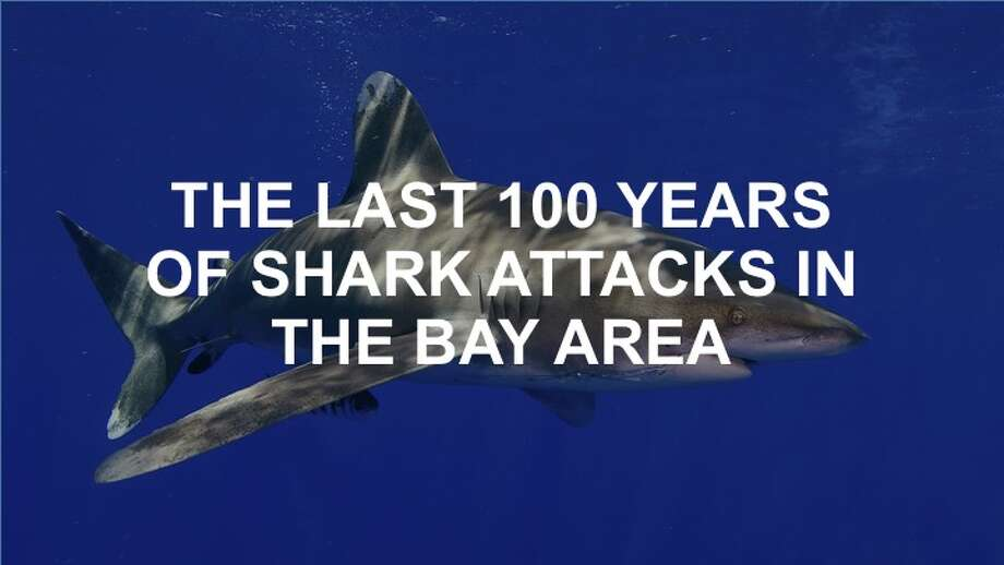 The last 100 years of shark attacks in the Bay Area mapped