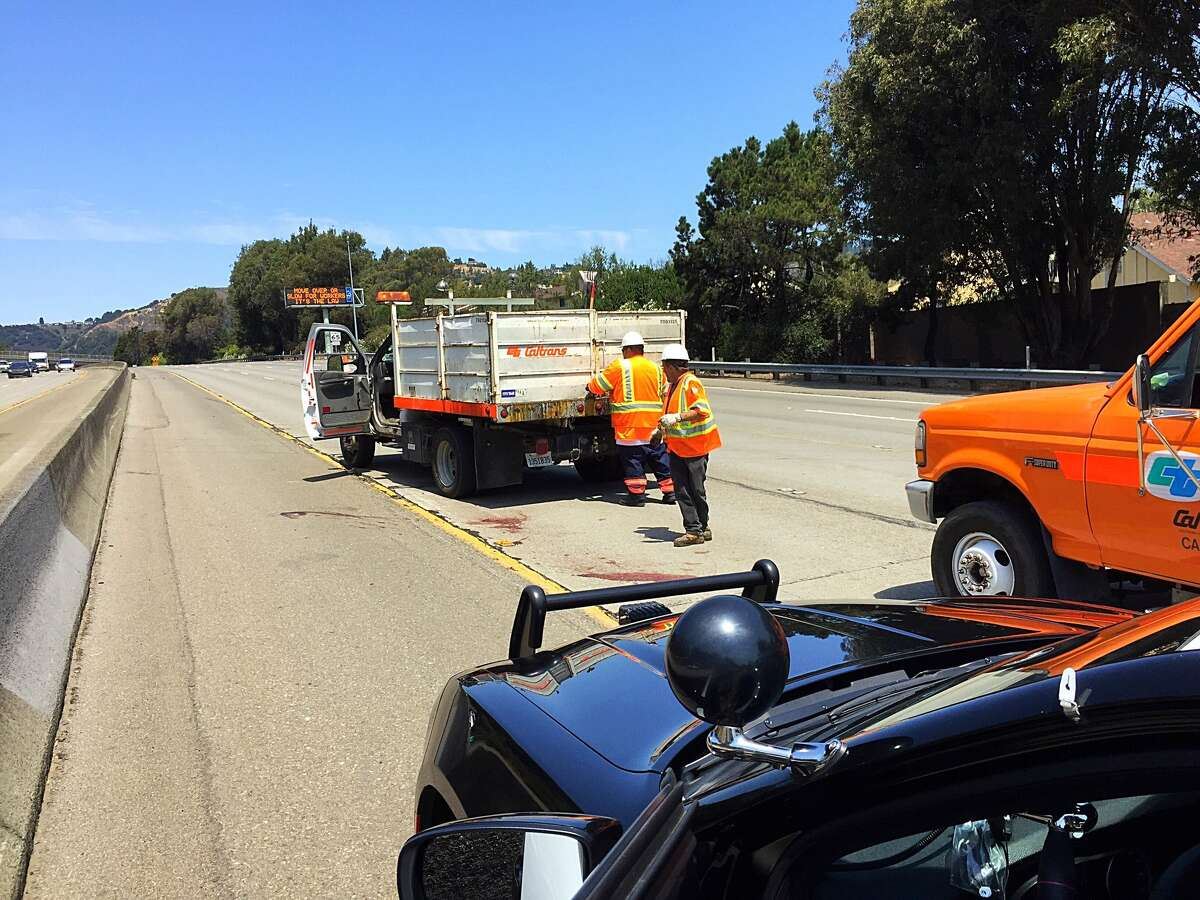 Caltrans employees clean a fallen fawn from the center divide of I-580 in Oakland on Aug. 2, 2017.