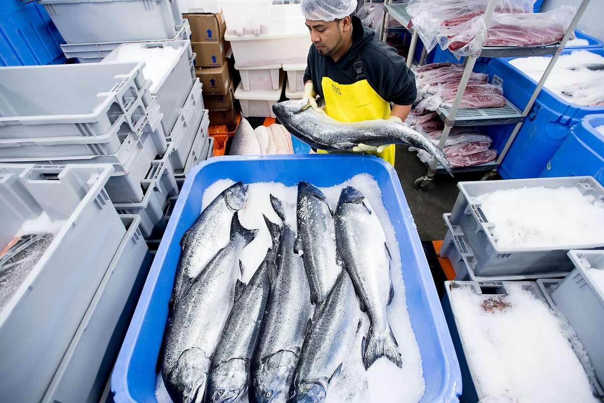 Joel Martinez ices salmon at Monterey Fish Market on Wednesday, Aug. 2, 2017, in San Francisco.