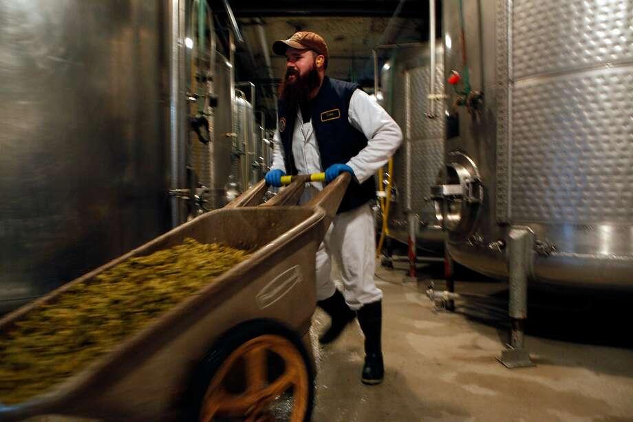 Luke Neu carts hops at Anchor Brewing, Monday, April 27, 2015, in San Francisco, Calif. Photo: Santiago Mejia, The Chronicle