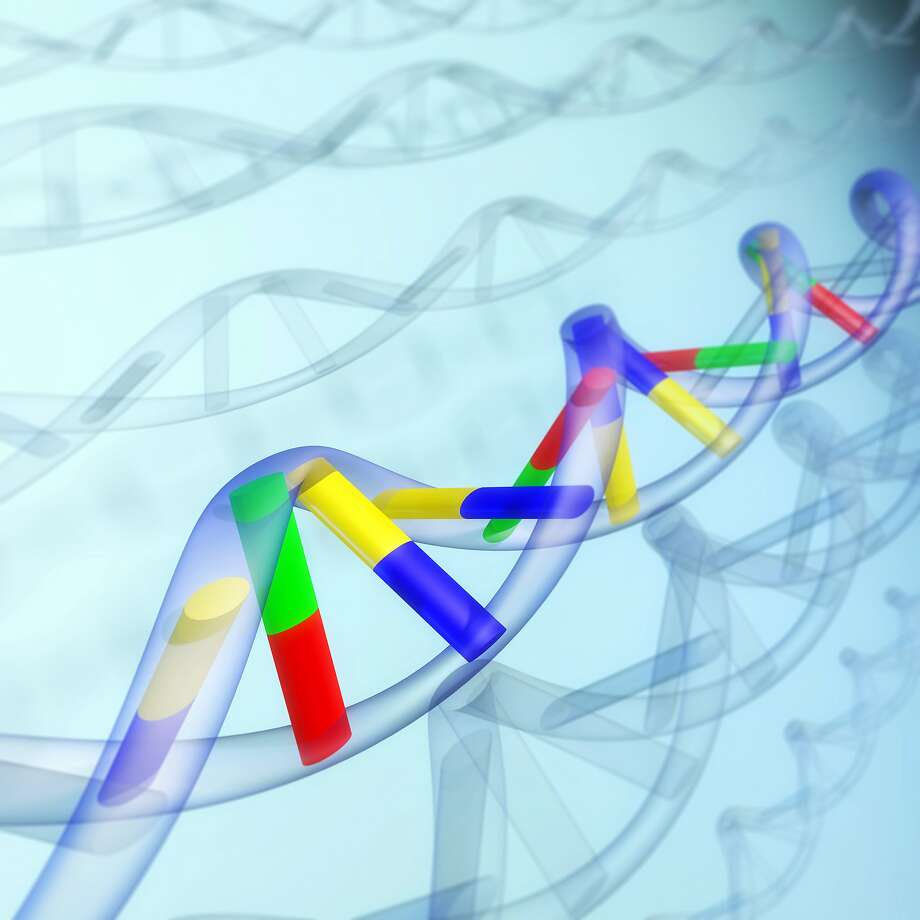 DNA sequence, abstract Photo: Oleksiy Maksymenko, Getty Images/imageBROKER RF