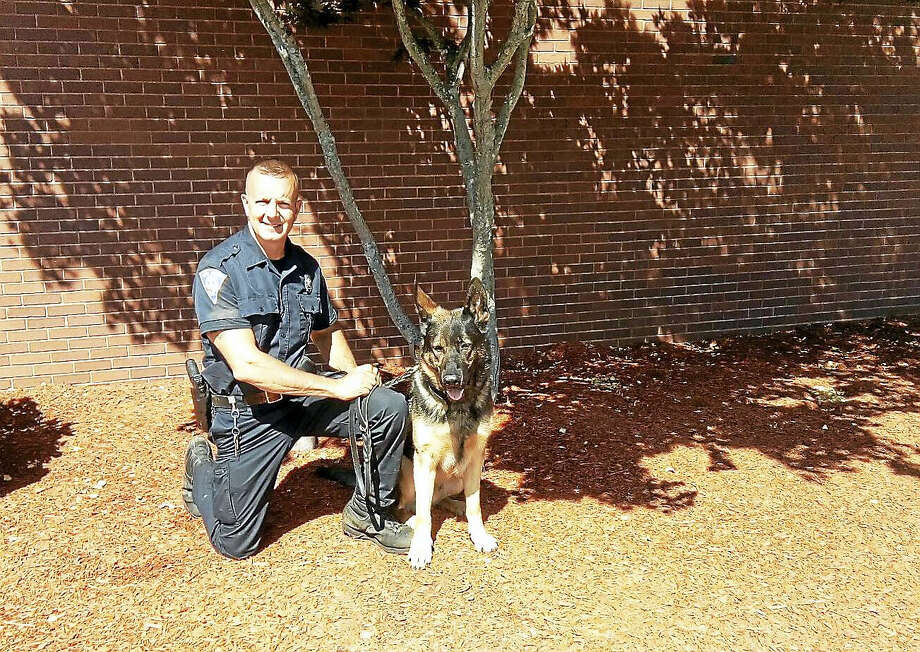 New Haven police patrol Officer Sean Sullivan with the department's newest dog, Gunny. Photo: New Haven POLICE DEPARTMENT