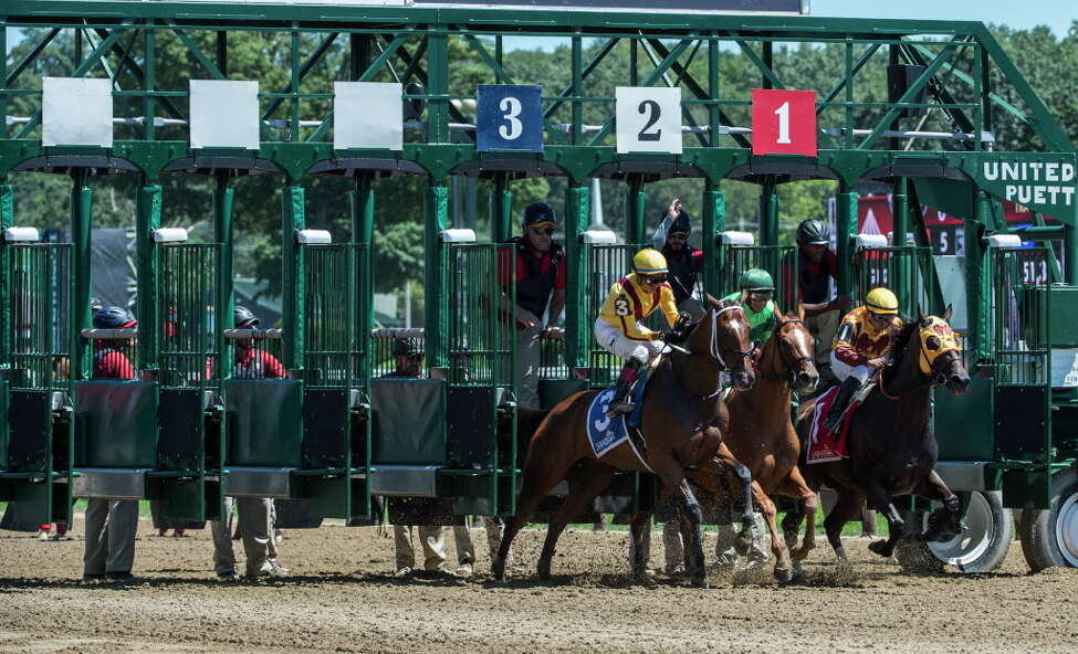 Five horses died during the first 11 days of the Saratoga Race Course meet and two others died at the track earlier in the summer, according to the state Gaming Commission. The pace of deaths so far is above that of recent years. (Skip Dickstein/Times Union)nion)