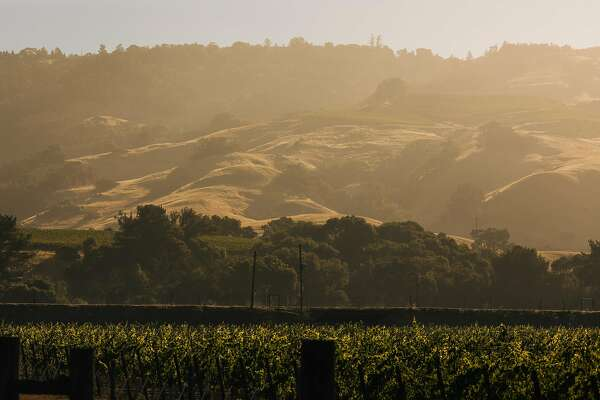 The hills of Anderson Valley are lit up by the early morning sun near Boonville, Calif. Friday, July 28, 2017.