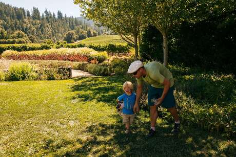 Daniel Gray and his 2-year-old son, Gavin, walk on the grounds of outdoor Goldeneye Winery in Philo. Photo: Mason Trinca, Special To The Chronicle