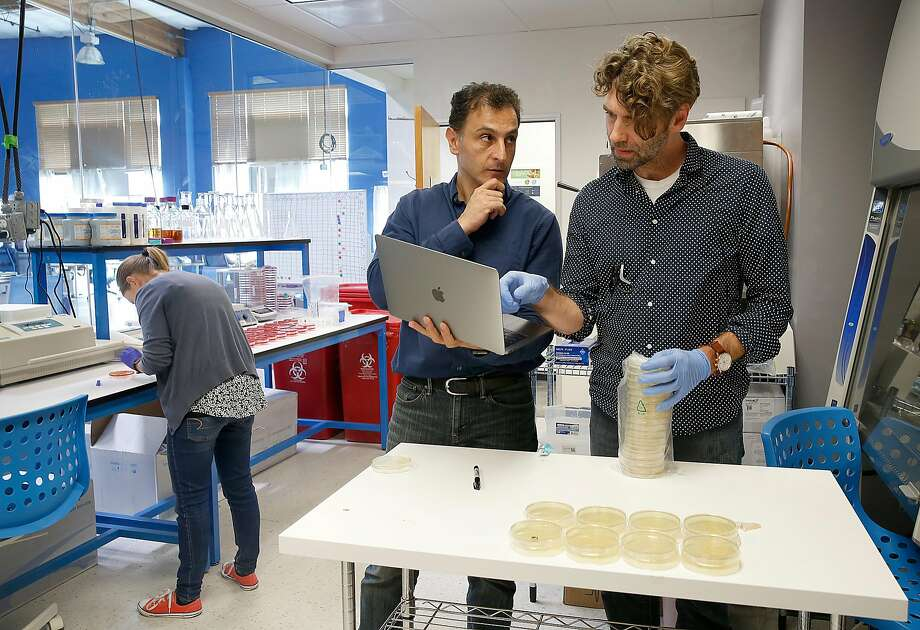Lead scientist Ramin Khaksar (center) talks with Chris Haney while Stephanie Pollard works on one of the technologies Clear Labs is developing in Menlo Park. Photo: Liz Hafalia, The Chronicle