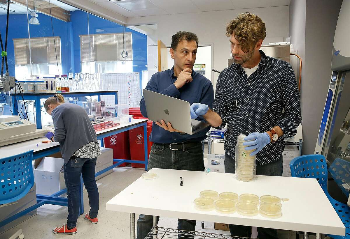 Lead scientist Ramin Khaksar (middle) talks with senior scientist Chris Haney (right) as research scientist Stephanie Pollard (left) develops novel food safety technologies at Clear Labs on Thursday, July 27, 2017, in Menlo Park, Calif.