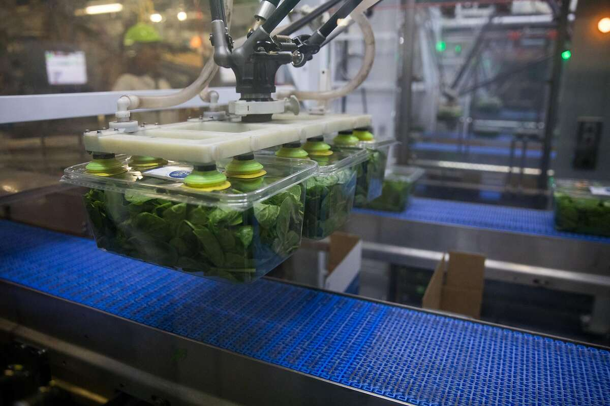Taylor Farms in Monterey County, one of North America's largest producers of fresh-cut fruits and vegetables, uses automation to help harvest and ship its products. A robot's vacuum suction lifts salad cartons and places them into boxes for shipping.