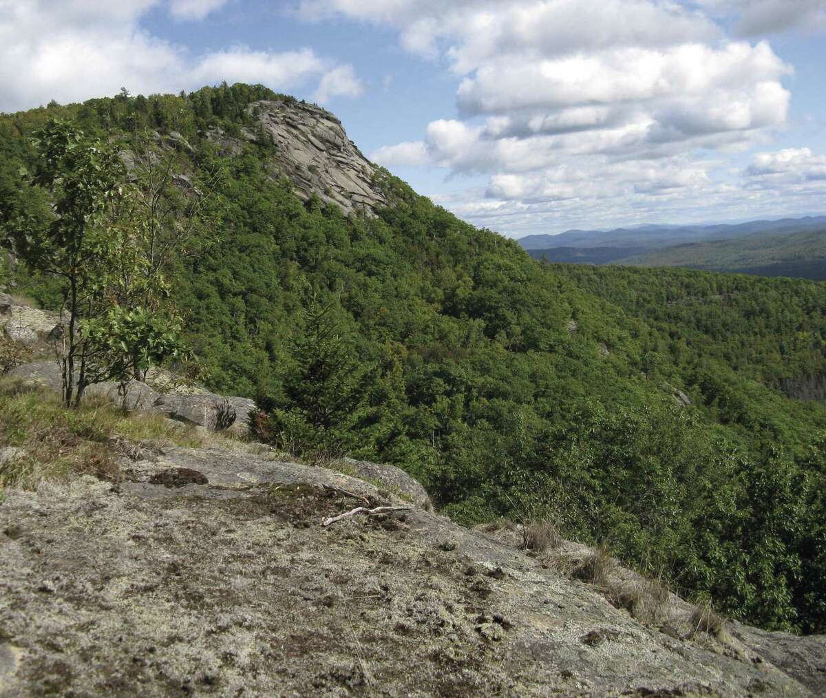 The summit of Moxham Mountain from the trail. Located in Minerva, the mountain is one of a number of spots in the Adirondacksthat Protect the Adirondacksrecommends for hikers looking to avoid the crowds at the High Peaks. (Herb Terns / Times Union)